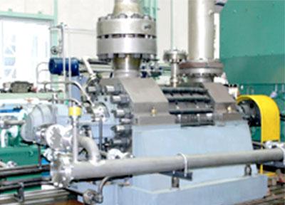 Synerlitz Product Agency Torishima 2